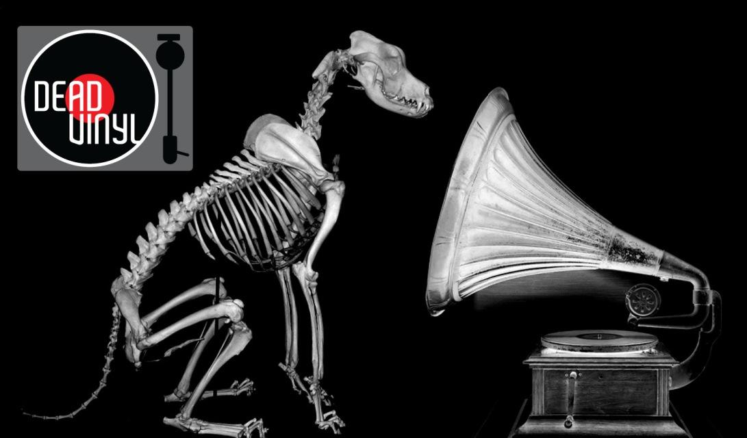 Dead Vinyl's voice